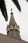 Catholic church and palm leaves — Stock Photo