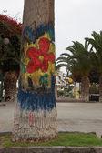 Palm tree with graffiti — Stock Photo