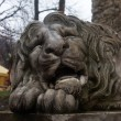Stock Photo: Sad lion sculpture