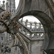 A part of view the gothic cathedral — Stock Photo