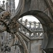 A part of view the gothic cathedral - Stock Photo