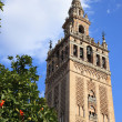 Catedral & La Giralda, Sevilla - Stock Photo