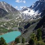 Alpine lake — Stock Photo #1221326