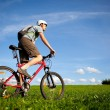Royalty-Free Stock Photo: Mountain biker.
