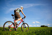 Mountain biker. — Stock Photo