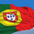 Stock Photo: Portuguese Flag.