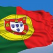 Portuguese Flag. - Stock Photo