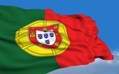 Portuguese Flag. — Stock Photo