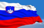 Slovenian Flag. — Stock Photo