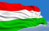 Hungarian Flag. — Stock Photo