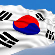 South Korean Flag. — Stock Photo #1223500