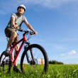 Mountain biker. — Stock Photo #1267263