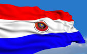 Paraguayan flag — Stock Photo