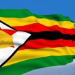 Zimbabwean flag - Stock Photo