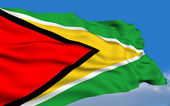 Guyanese flag — Stock Photo