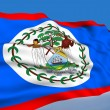Belizean flag — Stock Photo