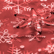 Christmas star - Stock Photo