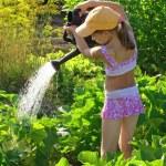 Watering — Stock Photo #1093131
