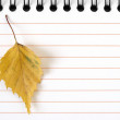 Notepad with yellow leaf — Stock Photo
