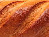 Ruddy crust — Stock Photo