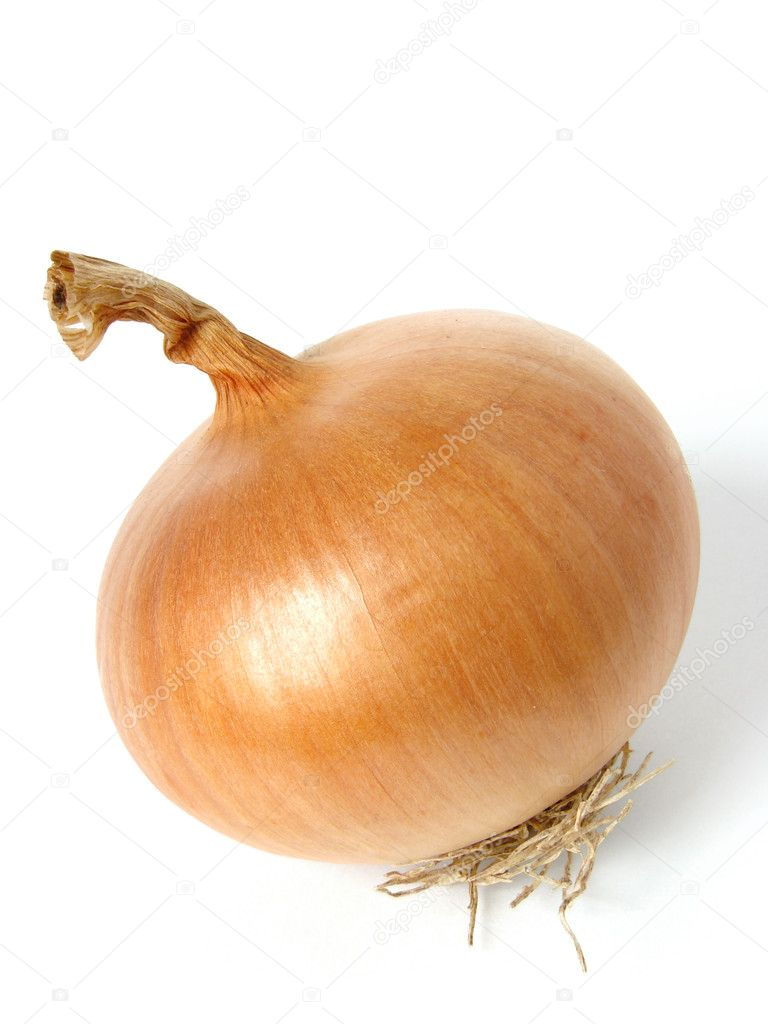 Onion bulb on white                                — Stock Photo #1102455