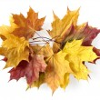 Autumnal garland — Stock Photo
