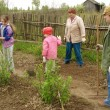 Family gardening - Stock Photo