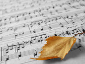 Autumnal melody — Stock Photo