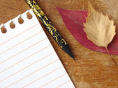 Autumnal notes — Stock Photo
