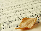 Autumnal melody 1 — Stock Photo