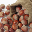 Hazelnuts — Stock Photo #1091439