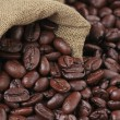 Coffee beans — Stock Photo #1091896