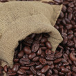 Coffee beans — Stock Photo #1092115
