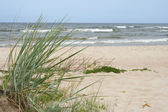 Baltic sea landscape — Stock Photo