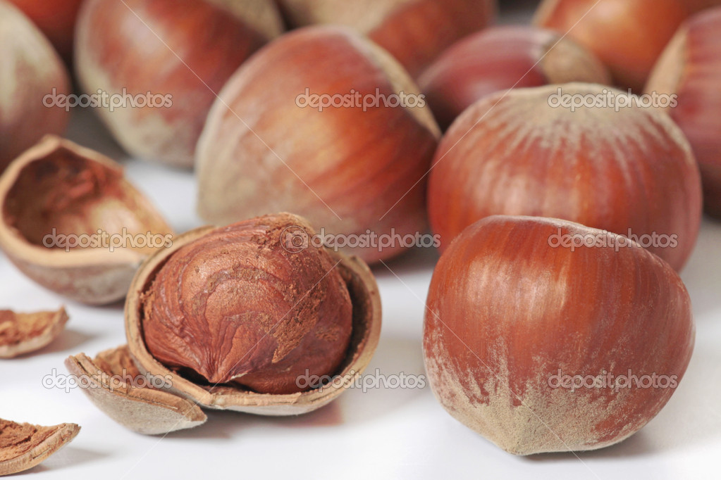 Hazelnuts  Stock Photo #1091294