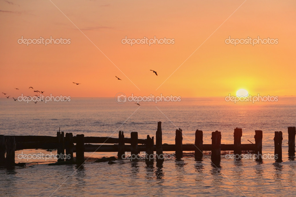 Sunrice  Stock Photo #1094455