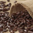 Coffee beans — Stock Photo #1141832