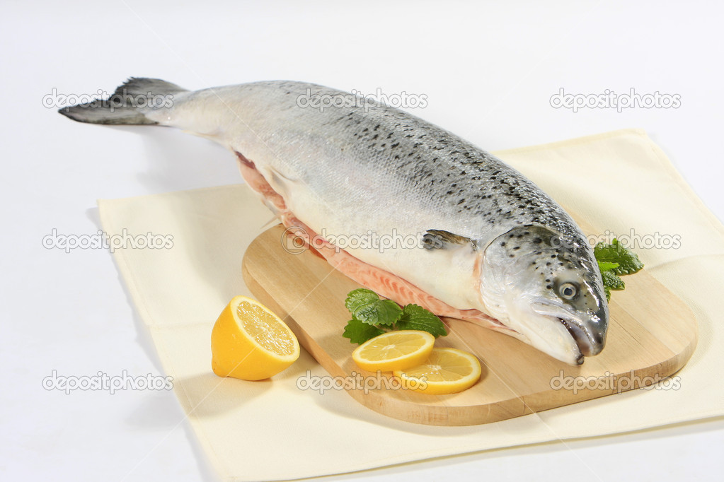 Fresh raw salmon — Stockfoto #1179426