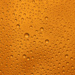 Beer macro - Stock Photo