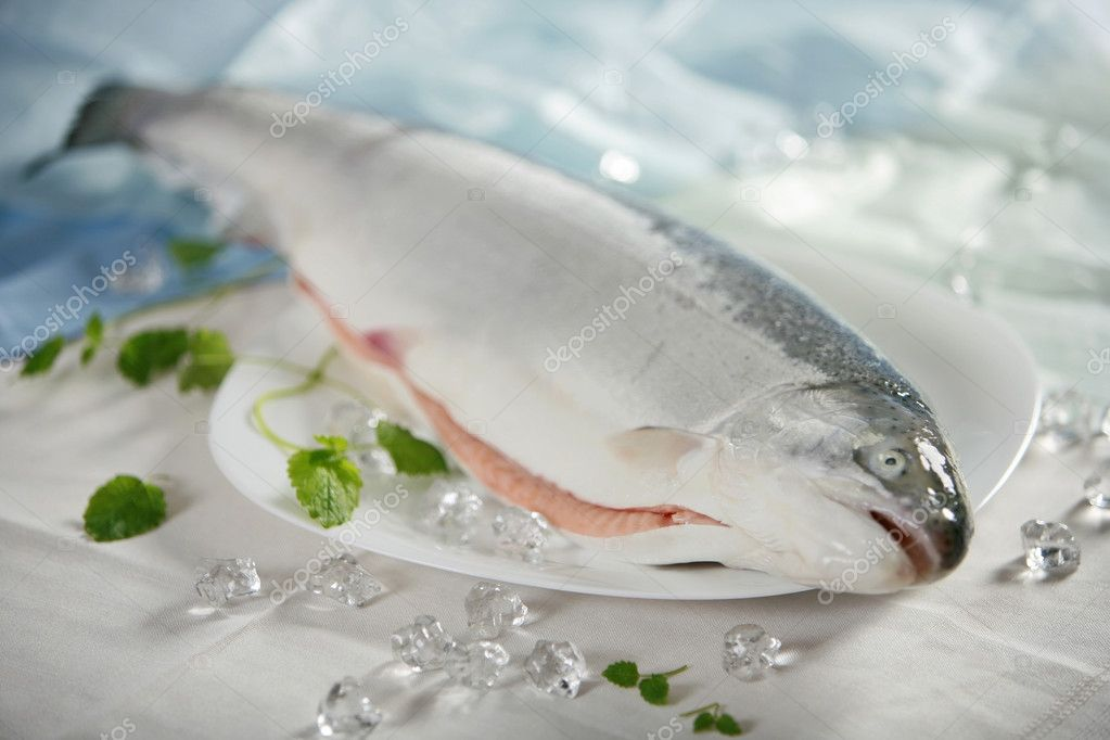 Fresh raw salmon — Stock Photo #1199622