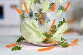 Explosión vegetal — Foto de Stock