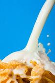 Escamas con leche — Foto de Stock