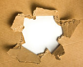 Torn cardboard — Stock Photo