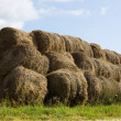 Royalty-Free Stock Photo: Many haymow