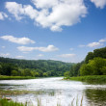 Summer Landscape, river — Stock Photo #1088931