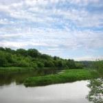 Summer Landscape, river — Stock Photo #1089270