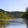 Spring River — Stock Photo