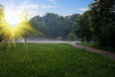 Sunrise at the summer park — Stock Photo
