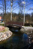 Bridge in Spring Park — Stock Photo