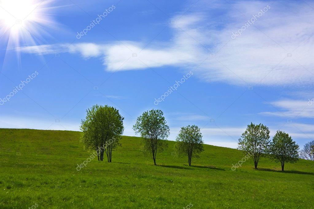 Grass trees on hill, blue sky — Stock Photo #1089944